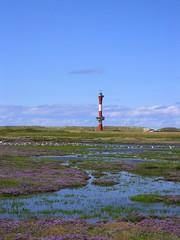 Wangerooge (perspective-OL) Tags: lighthouse birds germany geotagged faro island deutschland salt meadows insel german ostfriesland nordsee friesland leuchtturm wangerooge salzwiesen zugvögel geo:lat=53786962 geo:lon=7872219