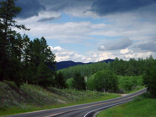 Black Hills, South Dakota, July 2004