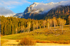 Round Prairie YNP (Bonnie Bowne) Tags: mountain mountains nature sunrise landscape yellowstone wyoming naturelover