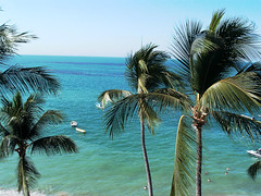 Roof1 (Dead  Air) Tags: ocean travel trees sky beach boats bay palm palmtrees puertovallarta