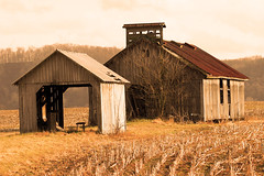 weathered (jaki good miller) Tags: old tag3 taggedout sepia rural interestingness cornfield tag2 tag1 country barns farmland explore exploreinterestingness weathered jakigood idyllic pikecounty top500 explorepage explored explorepages