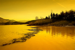 Visions  [ of ]  Gold (| HD |) Tags: sunset lake seascape 20d nature silhouette yellow oregon canon landscape ilovenature gold visions golden lagoon vision hd scape darwish ashland hamad dri hdr emigrant