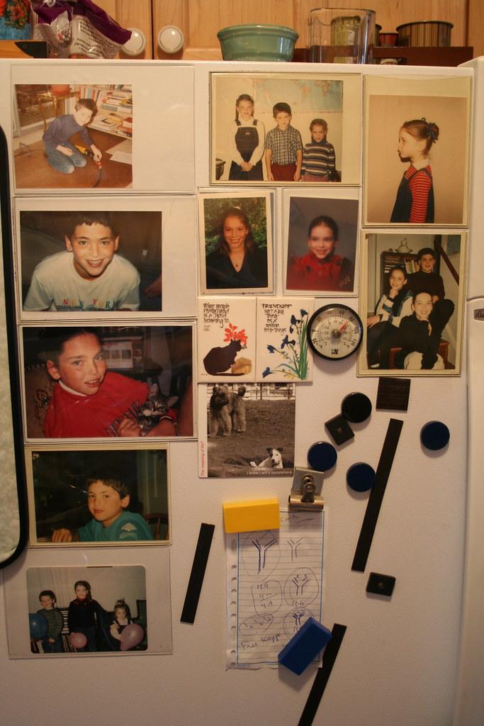 My refrigerator door