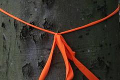 Duet knit (Benny Hünersen) Tags: sea sculpture orange art june juni by kunst duet knit christian karl sculpturebythesea sculptures aarhus sculpturesbythesea århus 2015 skulpturer geleff karlchristiangeleff duetknit