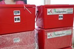Transplantes SC (Assembleia Legislativa de Santa Catarina) Tags: sc al foto joel fotografia sangue solon doao soares agncia transplantes