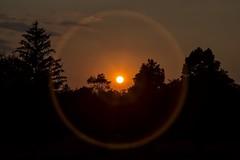 Shining On (gimmeocean) Tags: sunset sun sol newjersey nj clark flare sunring scotchplains oakridgepark