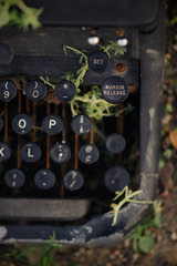 Margin Release (Dane Vandeputte) Tags: nikon d7200 nikond7200 nikonafsvrmicronikkor105mmf28gifed cantigny park cantignypark wheaton il wheatonil illinois bokeh evening typewriter keys letters numbers margin worn weathered plants ground dirt rocks writing vintage thechallengegame flickrchallengegroup flickrchallengewinner remington f3 105mm challengegamewinner