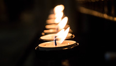 Depth Of Fire (NVOXVII) Tags: candle tealight fire wick cathedral peaceful prayer ambient row line dof depthoffield nikon macro lightanddark
