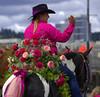 Pink Rider (swong95765) Tags: woman equestrian horse roses pink rider riding horseback hat waving