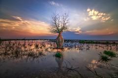 Winter's Dawn - Qatar (zai Qtr) Tags: qatar zaiqtr composite baidalqataria baidalgaa exploreqatar winter2017 clouds water nature nikon tokina shams friday feb2017 qatarinmotion outdoor