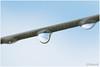 rain drops (HP012229) (Hetwie) Tags: vogel raindrops druppels thuis regen water regendruppels waslijn helmond noordbrabant nederland