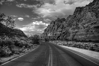 Snow Canyon B/W