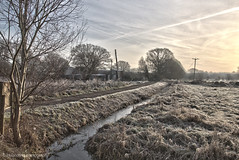 Winter morning in Somerset. (hillandsky) Tags: shapwickheath frosty frost icy winter wintermorning somerset white wintersun nature wintertime tree treescape hdr landscape hdrlandscape