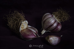 Proyecto 20/365 (Art.Mary) Tags: vegetables légumes bodegón stilllife naturemorte food canon garlic ail proyecto365 aliment