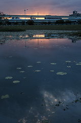 (卡魯=KARU) Tags: 夕陽 sunset city 城市 河
