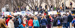 2017.01.29 No Muslim Ban Protest, Washington, DC USA 00314