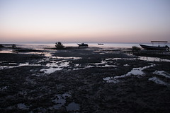 IMG_2583 (DafneCholet) Tags: park parque red sea naturaleza mountains sunrise reflections boat mar rojo holidays barco photographer natural redsea egypt el amanecer mangrove desierto egipto vacaciones sheikh sharm reflejos fotografo manglar