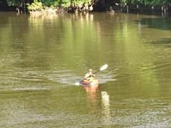 june 2015 txu heritage 077 (Poisoned_Pics_Photography) Tags: heritage river kayak parks bridges trinity kayaking watersports activities txu june2015txuheritage