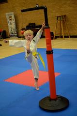 Taekwondo Competition (sophie_merlo) Tags: sports sport action candid martialarts taekwondo