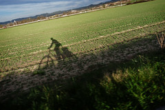 (Markus' Sperling) Tags: shadow cicloturismo bike ombra sombra bici touring ciclism