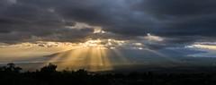God Rays; Hawai'ian Style (ArneKaiser) Tags: godrays hawaii kula landscape maui mauicollection westmaui crepuscularrays panorama sunset unitedstates flickr