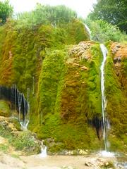 Eifel by nature (Jrg Paul Kaspari) Tags: summer nature waterfall moss wasserfall sommer natur eifel wandern moos kalk sinter nohn vulkaneifel naturdenkmal dreimhlen kalkeifel wasserfalldreimhlen nohnerwasserfall eifelschatz