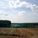 """harvested field #Flemishardennes #Belgium #super_belgium <a style=""""margin-left:10px; font-size:0.8em;"""" href=""""http://www.flickr.com/photos/117161355@N07/20190899382/"""" target=""""_blank"""">@flickr</a>"""