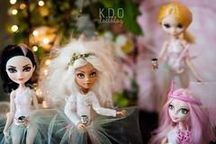 photo-27 (blog.kiara) Tags: doll ooak photoblog  photodoll monsterhigh  dollblog