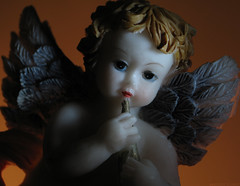 "Bob Dylan - ""Precious Angel"" (LUSEJA) Tags: luseja argentina parana powershot entrerios 2017 canon s5is hmm macromondays inspiredbyasong dylan bobdylan precious angel cherub querubin"