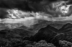No Pico do Couto, Petrópolis, Rio de Janeiro (mariohowat) Tags: morrodocouto picodocouto pretoebranco natureza blackandwhite brazil brasil petrópolis bw blancoynegro monochrome
