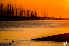 Coucher de soleil sur le port / Sunset on the harbour - La-Rochelle (christian_lemale) Tags: larochelle port soleil couchant sunset coucherdesoleil harbour mâts masts mer sea france extérieur outdoor nikon d7100