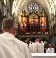 Bishop Richard Malone celebrates Diaconate Ordination Mass at St Joseph Cathedral in Buffalo - September 2016