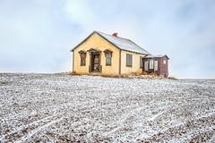 Sugar Dusted (DeVaughnSquire) Tags: snow winter saskatchewan abandoned prairies forgotten backroads home homestead farm country landscape white scenic yellow chill