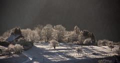 Matin féerique (mrieffly) Tags: vosgesalsace htrhin geishouse neige contrastes canoneos50d 100400issériel