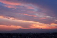 pinky cloud(ピンク色の雲) (daigo harada(原田 大吾)) Tags: sunset 夕日 雲 ピンク 空