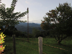 IMG_2513a