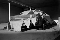 Mustang (ADMurr) Tags: la hollywood hills covered shreds black white bw monochrome film leica m5 35mm kodak 400 los angeles