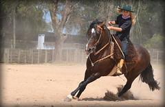 Sinthia Schuster (Eduardo Amorim) Tags: gaúcha gaúchas gaucha gauchas mulher mujer woman femme donna pampa campanha fronteira jaguarão riograndedosul brésil brasil sudamérica südamerika suramérica américadosul southamerica amériquedusud americameridionale américadelsur americadelsud brazil eduardoamorim cavalos caballos horses chevaux cavalli pferde caballo horse cheval cavallo pferd crioulo criollo crioulos criollos cavalocrioulo cavaloscrioulos caballocriollo caballoscriollos