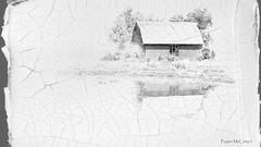 Barn reflections (peppermcc) Tags: bw reflection texture barn photoshop blackwhite texas countyr