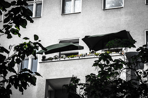 """DSC_7642 • <a style=""""font-size:0.8em;"""" href=""""http://www.flickr.com/photos/98961618@N03/18177154113/"""" target=""""_blank"""">View on Flickr</a>"""