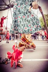 Belgium, Antwerp,  De Reuzen - Saga des Gants - the giants (Michal Jacobs) Tags: europe belgium belgique belgi be antwerp citycenter bel citycentre antwerpen anvers streettheater flanders streettheatre benelux flemishregion dereuzen flandersregion sagadesgants