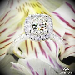 Custom Cushion Halo Diamond Engagement Ring (Whiteflash Diamonds) Tags: wedding flower macro engagement texas houston ring diamond virtual custom cushion platinum gem sugarland gemstone vs2 i whiteflash size525 201ct