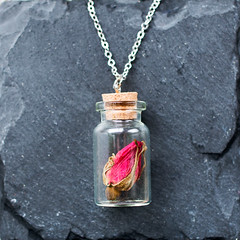 (Matildigt) Tags: glass make rose vintage stars design diy necklace hand crystal handmade shell jewelry dandelion seeds jewellery wishes wish ros quartz making fr det vial halsband maskros smycken gr gra egna sjlv glasflaskor handgjort smyckestillverkning smyckesdesign glasflaska wishesandstars handtillverkat