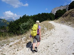 """Ascending above Valle d'Arano • <a style=""""font-size:0.8em;"""" href=""""http://www.flickr.com/photos/41849531@N04/19566782439/"""" target=""""_blank"""">View on Flickr</a>"""