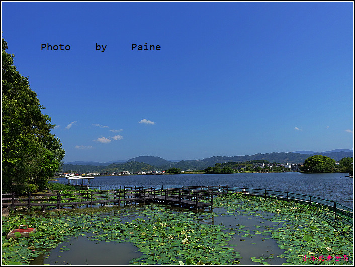 和歌山大池遊園-平池綠地公園 (18).JPG