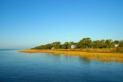 Marsh Grass In The Morning Sun (redhorse5.0) Tags: appalachicola florida marshgrass appalachicolaflorida water bay gulfofmexico floridapanhandle redhorse50 sonya850 morningsun