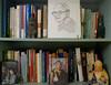 bookcase: 2017 (giveawayboy) Tags: bookcase bookshelf 2017 oleander raphaelaloysiuslafferty ralafferty lafferty portrait ballpoint pen drawing sketch