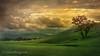 Tassajara (Laura Macky) Tags: landscape tassajara livermore sky