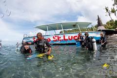 slu_bradh_V55A1036017 (kaufmankronicle) Tags: diving kidsseacamp stlucia