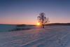 Winter Landscape (Mirek Pruchnicki) Tags: winter landscape sunset tree snow frost colors cold orły województwopodkarpackie polska